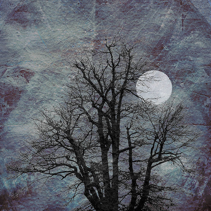 Black Tree, White Moon print