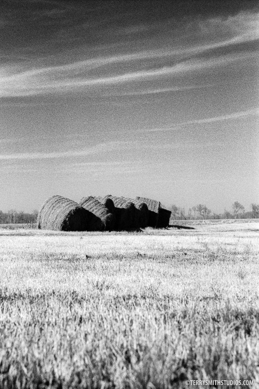 Hay Shadows, Arkansas Farm series