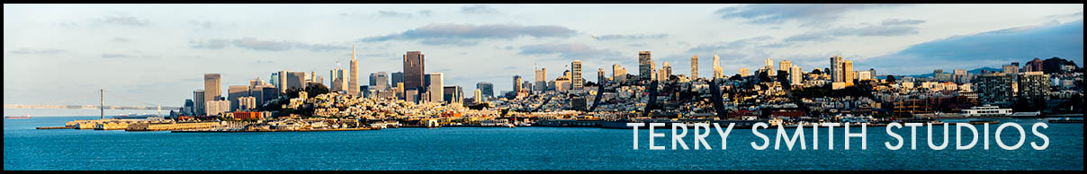 Panoramic of the San Francisco bay and skyline.